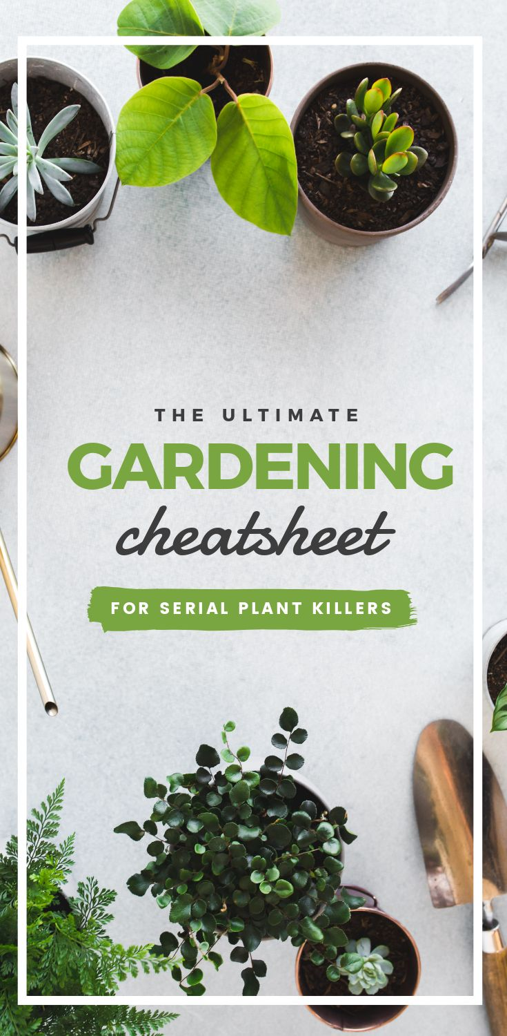 Ultimate Gardening Cheatsheet - Pinterest Templates 10 Ways - Hack Visual Design Series
