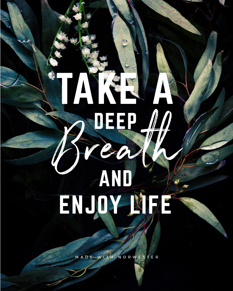 Quote made with Norwester Font - Take a deep breath and enjoy life - 73 Best Free Fonts to Create Stunning Designs