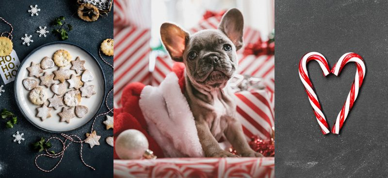 Christmas Stock Photo Images - December Content Calendar Ideas + Templates
