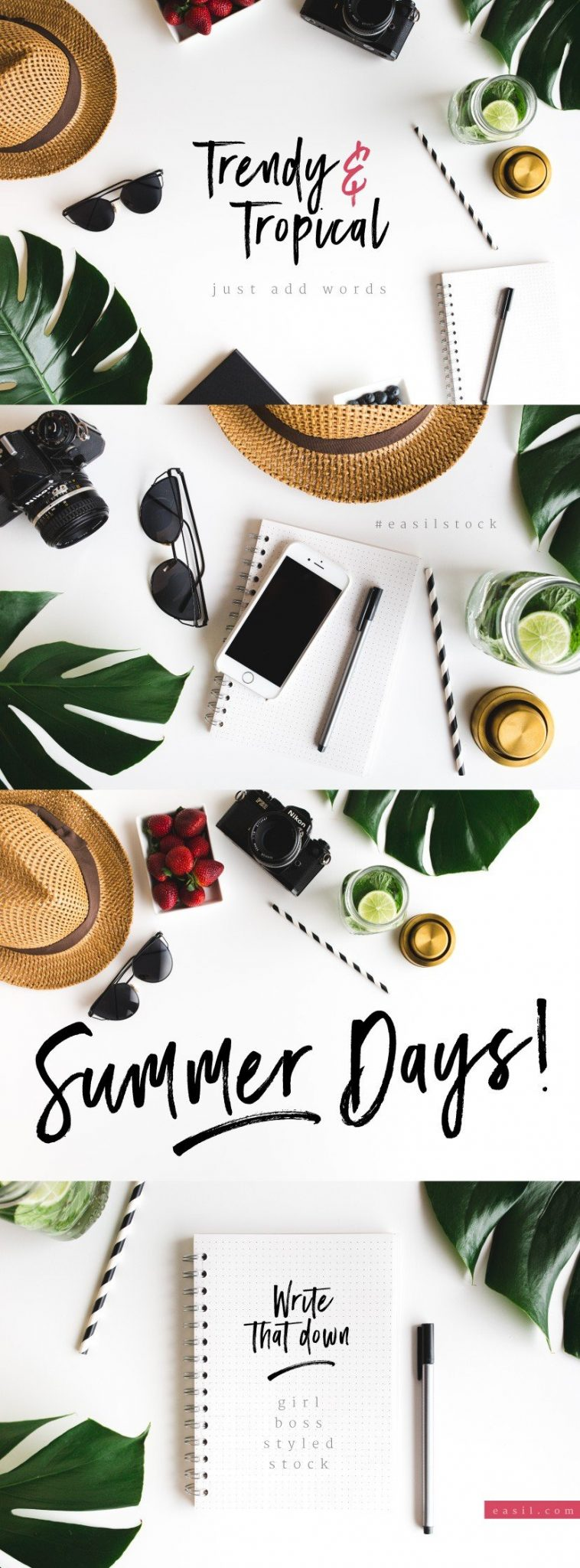 Tropical styled stock photography