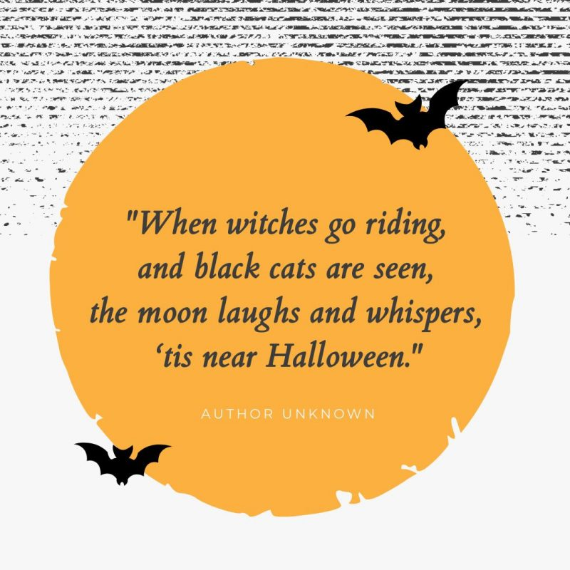 When witches go riding Halloween Quote by Easil - 22 Halloween Quotes for Spooky Social Media Posts