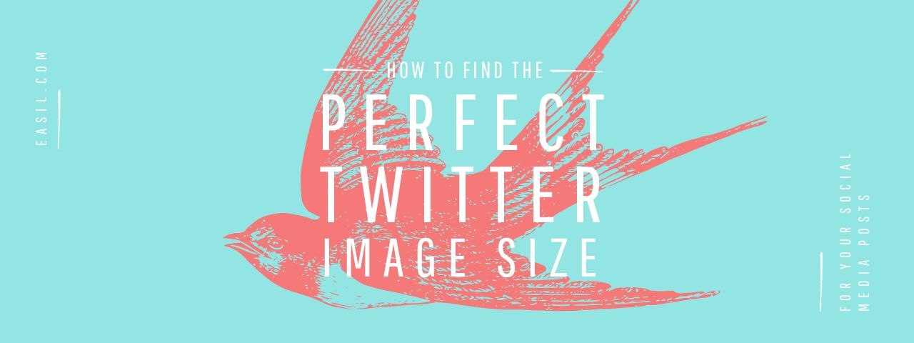 How to Find the Perfect Twitter Image Size for your Social Media Posts - Easil