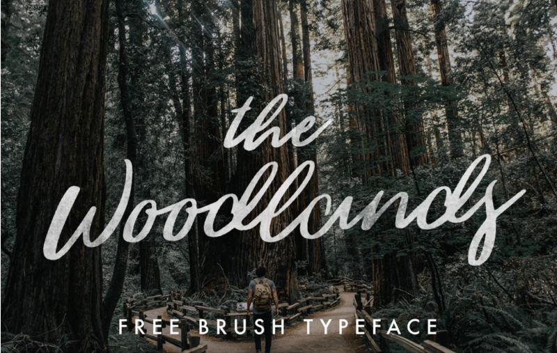 The Woodlands Free Brush Typeface - Mindfully Font - 73 Best Free Fonts to Create Stunning Designs in 2018